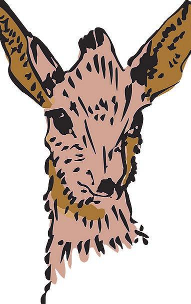 Antelope Physical Forest Woodland Animal Horns Sir