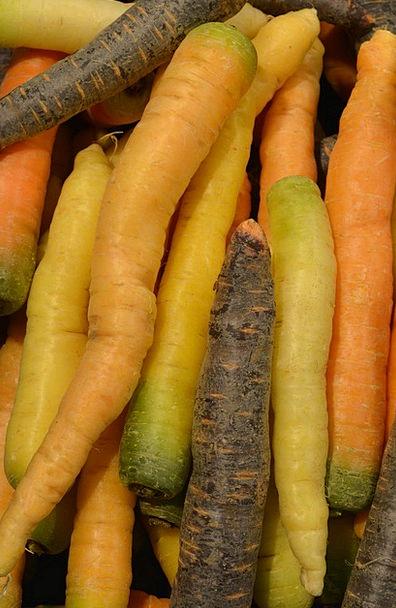 Carrots Incentives Potatoes Roots Origins Vegetabl