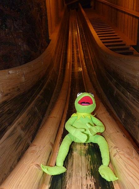 Frog Slip Blunder Kermit Mine Pit Salt Mine