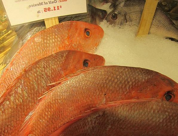 Fish Angle Fish Market Snapper Marine Maritime