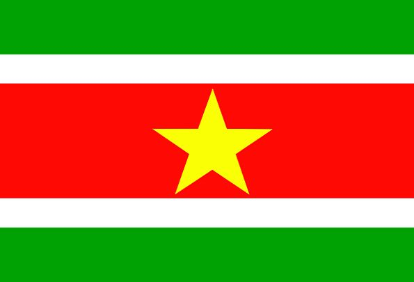 Suriname Standard Country Republic Flag Nation Sta