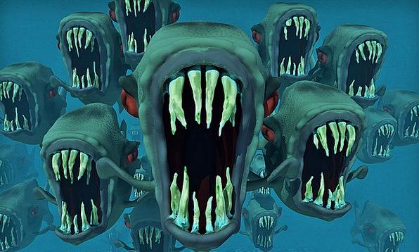 Piranhas Frightening Fish Swarm Nightmare Blue Fis