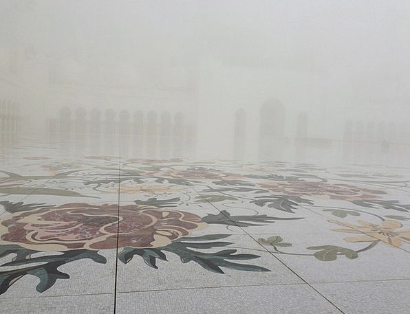 Fog Mist Textures Plants Backgrounds Moshe Flowers