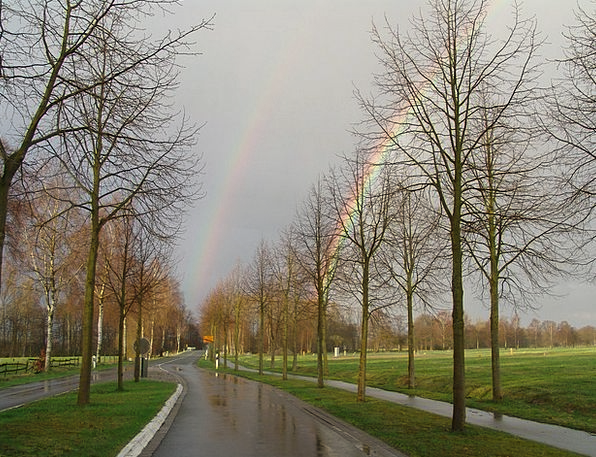 Regenboge Traffic Dual Transportation Rainbow Mult